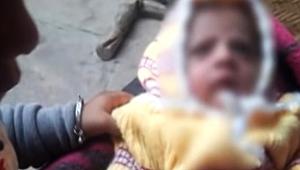 Hindistan'da Bir Maymun 12 Günlük Bebeği Öldürdü