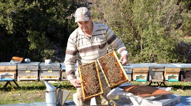 Antalya'da Arıcılar Yeni Sezon İçin Hazırlanıyor